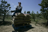 Gene Kay, founder and roastmaster of Silver Canyon Coffee, sits on top bags of coffee beans just a...