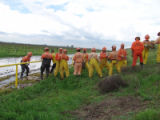 LEVEE04 -- Members of a levee work crew form a chain to pass sandbags down to the base of the dike...