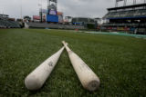 A maple bat, at the left, doesn't have grain, while the grainy ash bat, is to the right, at Coors...