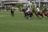 Expect the competition to be fast and furious when polo players swing into the 17th annual Denver...