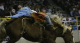 At the National Western Stock Show Josh Luger, ND is laid back by his bare back bronc ride at the...