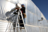 Rudy Martinez (cq) works on an air vent at Bonnie Plants Greenhouse in LaJunta  on Thursday...