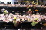 Workers remove plastic from paper recycling material for Waste Management of Denver at 5395...