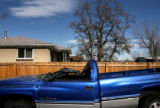 (PG7408) A large tree crushed the cab of a pick-up truck near West 52nd and Stuart in Denver,...