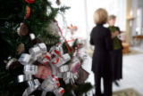 The boys and girls scouts of Colorado helped decorate the Christmas trees at the governor's...