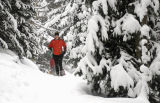 Summit Daily/Mark Fox Karen Melliar-Smith, of Denver, runs up the North Tenmile Trail near Frisco...