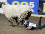 Jackson Leafgren (CQ), 5, of Eaton, Colo., loses a boot during the Mutton Bustin' event as the...