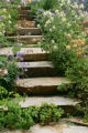 Penstemon, columbine, and low-growing perennials flank meandering flagstone stairs at a Denver...