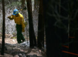 Tomasz Kucharski (cq), of the City of Boulder Open Space and Mountain Parks, cleans up hot spots...
