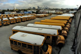 Most of these buses in lot C have already been changed to biodiesel fuel,Tuesday morning October...