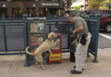 An ATF Agent K9 bomb sniffing dog checks the newspaper boxes at the corner of Larimer and 17th...