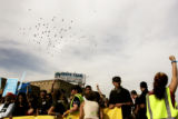 A flock of birds flies over protesters as they march with Iraq Veterans Against the War on...
