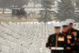 A horse-drawn carriage carries the casket of Lance Corporal Jeremy Tamburello, 19, a Marine from...