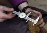 (GOTHIC, CO, 5/27/04) UCLA researcher Dan Blumstein (cq) measures a marmot foot while collecting...