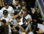 (DENVER, COLO., JUNE 15, 2004)  Colorado Rockies' #17, Todd Helton, left/center, gets high fives...