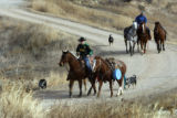 Josh Peek, 28 rides his horse Cody and leads extra horses along with Wes Mack, a calf roper a they...