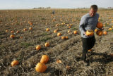 "David Schlagel, of Eaton, Colo., picks up ""ammo"" for his pumpkin-launching canon at the..."