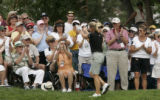 The crowd applauds Annika Sorenstam as she takes a walk up to the 18th green.  And she returns the...