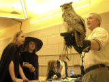 Curtis Strous (cq), a volunteer for HawkQuest in Parker, Colorado, holds a Great Horned Owl as...