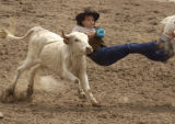 Sonny Jim, of Gallup, NM., holds on tight after jumping from his horse during the steer wrestling...