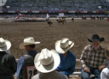 Cowboys crowd into the small area behind the chutes inside the rodeo arena at Cheyenne Frontier...