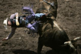 Tate Stratton, of Stanley, NM., is thrown of a bull during his ride at the Cheyenne Frontier Days...