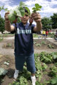 Cesar Rivera, (cq) 10holds up radishes he picked from his plot at the Fairview Community Garden...