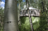Ophir CO, June 2004 This Yurt owned by Andy and Amy Ward is nestled nicely in  this aspen stand in...