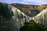 Netting is draped over grapevines at Garfield Estates Winery in Palisade, Colorado to prevent...