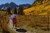 Theresa Lee (cq) walks through the golden colors at Maroon Bells on a warm Monday afternoon...