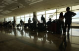 (Denver, COLO.  February 21, 2005) United customers wait in a long line, weaving throughout the...