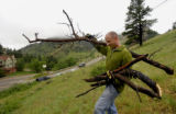(Boulder, Colo., June 18, 2004)    HGTV project.   Christopher Herr (cq) carries dead wood down to...