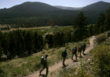A Search and Rescue Team made up of Rocky Mountain National Park employees hike down to the Lawn...