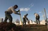 (Denver, Colo., November 19, 2004) Andrew Alonzo, left, digs a hole to place the headstone of...