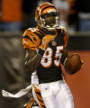 (Cincinnati, Ohio, October 25, 2004) Chad Johnson runs into the end zone after beating Champ...