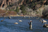 Fly fishers packed the public-access portions of the Arkansas River near Salida for the annual...