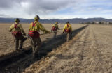 (GUNBARREL, Colo., March 1, 2005) Four of the firefighters walk the burn line back to a start...