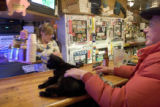 (WOODY CREEK, Colo., 2/20/05) An anyonomous Woody Creek local pets the Woody Creek Tavern cat,...