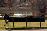 (DENVER, Colo., Mar. 28, 2005) Denver resident, Dan Taylor (cq) enjoys the above 70 tempertures at...