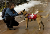 (CONIFER Colo., October 14,2004)   Angela Eaton Snovak lets her dog Shakti get the sent of a...