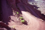 A cyclist decends the Horse Thief Trail which drops steeply down to the Green River at the...