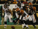 (Cincinnati, Ohio, October 25, 2004) #40 bMadieu Williams recovers a fumble in the secondGame...