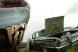 (10/10/04, Denver, CO)  Junked out cars from the Erie Auto Salvage Lot north of Denver in Erie,...