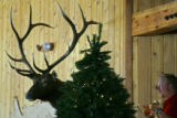 Bartender Mark Williams of Melbourne, Australia decorates a Christmas tree inside Two Elk Lodge in...