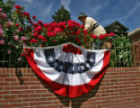 Jerry Kral (cq) works on his roses at his home on South Gaylord Street Wednesday morning June 7,...