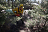 Steven Garcia (cq) of the Colorado Springs Fire Department cuts down small trees near a propane...