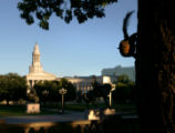 A squirrel peaks its head from behind a tree in Civic Center Park on Friday, July 7, 2006. TODD...