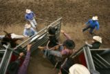 Austin Wahlert, of Galeton, comes out of the chute in saddle bronc at the Colorado State High...