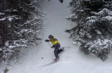 Alpine Rescue Team member Justin Peacock (cq) skiis out of the woods at Breckenridge Ski Resport...