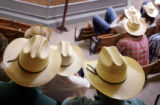 Ranchers gather for the weekly livestock auction at Winter Livestock in La Junta on Tuesday, June...